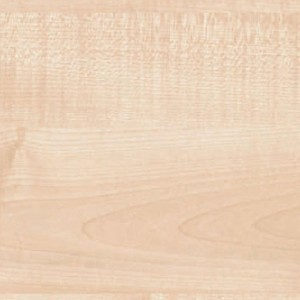 workstop-matte58-clear-maple